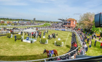 We're now powering Beverley Racecourse Feature Image